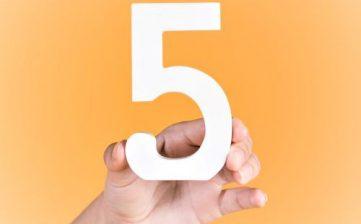 5 Keuntungan Sewa Mobil untuk Operasional Kantor